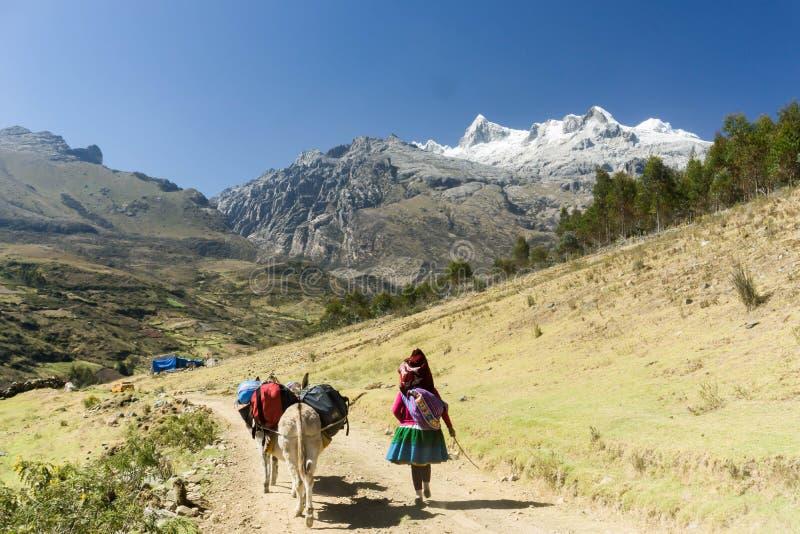 Expedição nos Andes imagens de stock royalty free