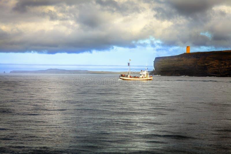 Expedición de observación de la ballena foto de archivo