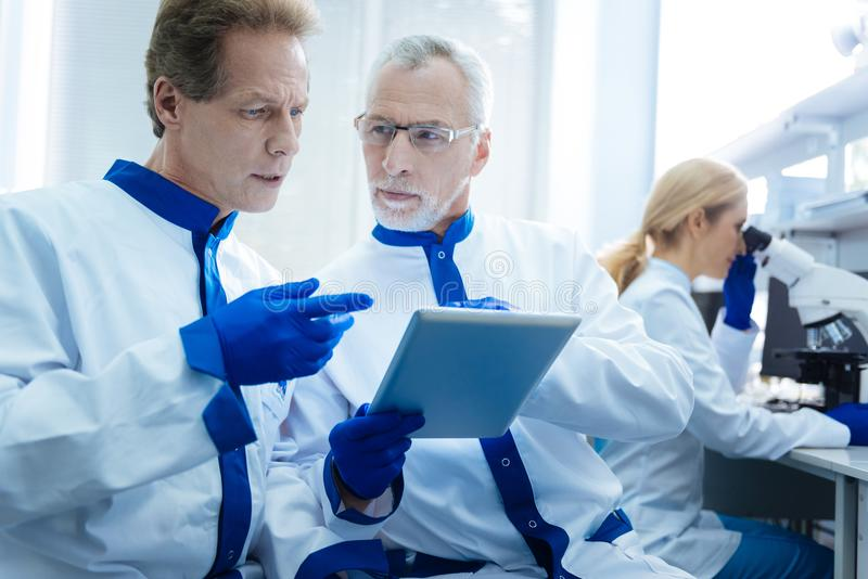 Experienced biologists discussing results displayed on a tablet. Co-workers. Serious concentrated professional scientist discussing test results displayed on a royalty free stock image