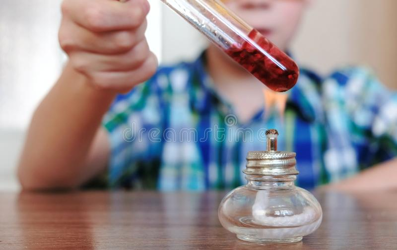 Experiments on chemistry at home. Closeup Boy`s hands heats the test tube with red liquid on burning alcohol lamp. stock images