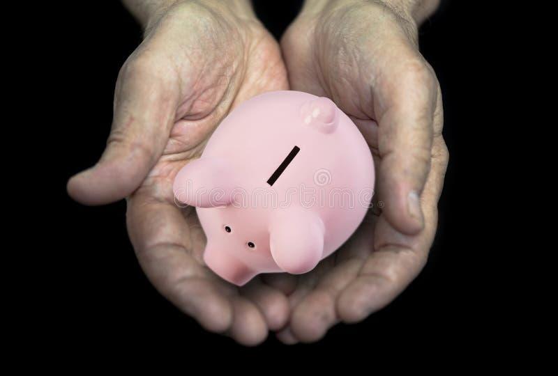 Experts avec la tirelire, concept de pension images libres de droits