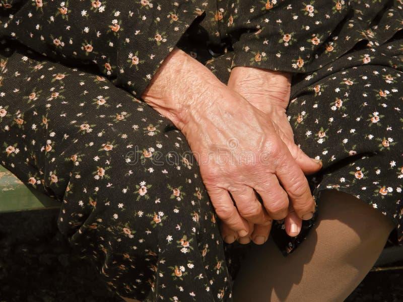 Experts sur mon grand-mère image libre de droits
