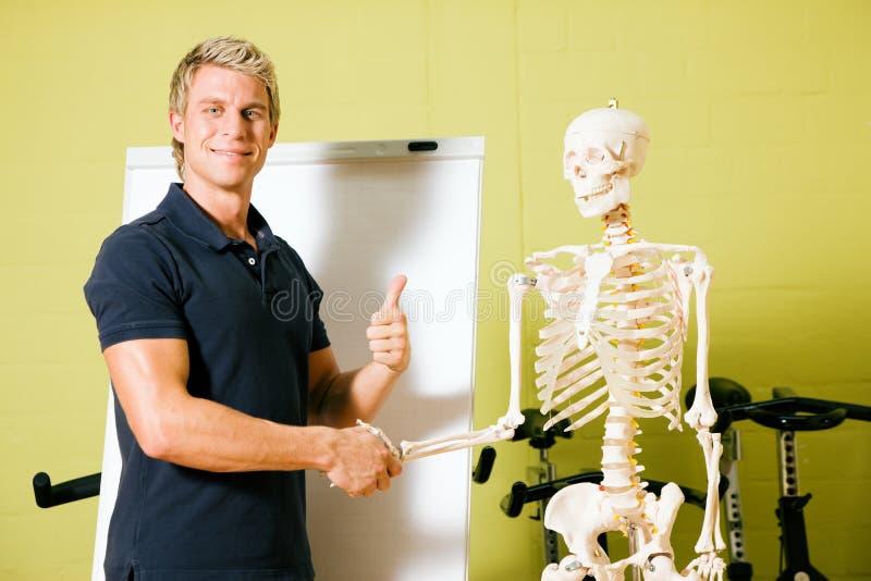 Explaining basic anatomy in gym stock photography