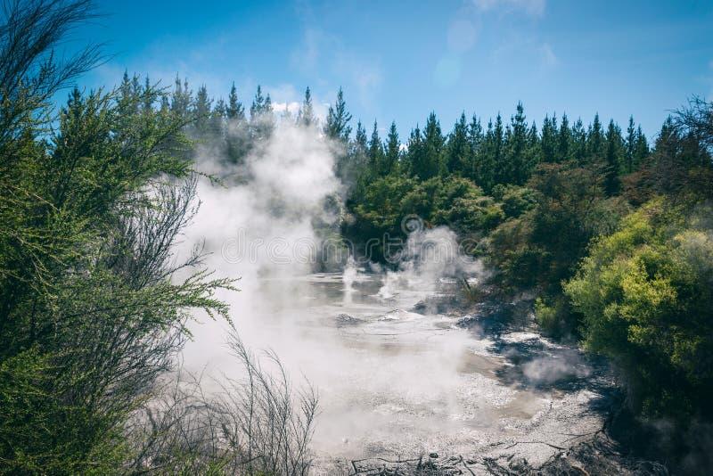 An exploding hot mud pool in Wai-O-Tapu Thermal Wonderland, Rotorua. New Zealand royalty free stock image