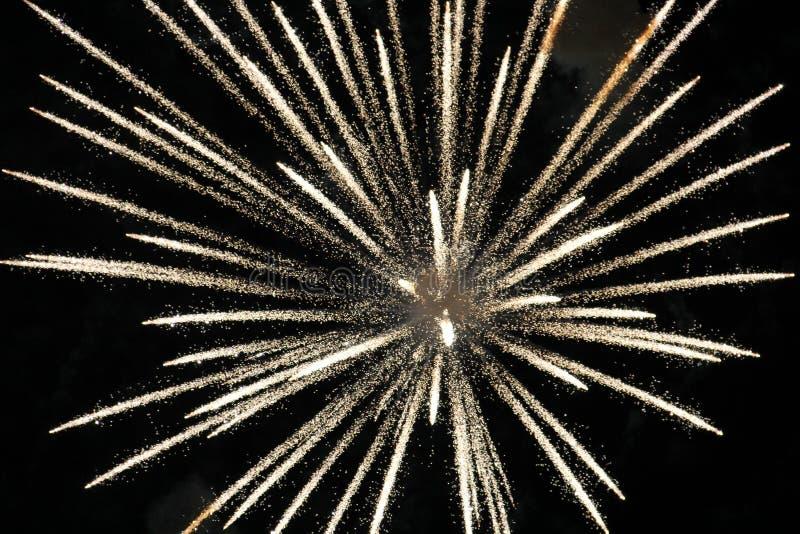 Download Exploding White Light Fire Firework Stock Image - Image: 40360103