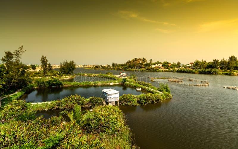 Exploitation de pisciculture, ville de Hoi An, Vietnam photo stock