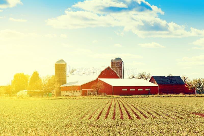 Exploração agrícola americana tradicional imagens de stock royalty free
