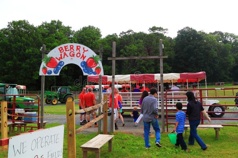 Exploração agrícola Berry Wagon foto de stock