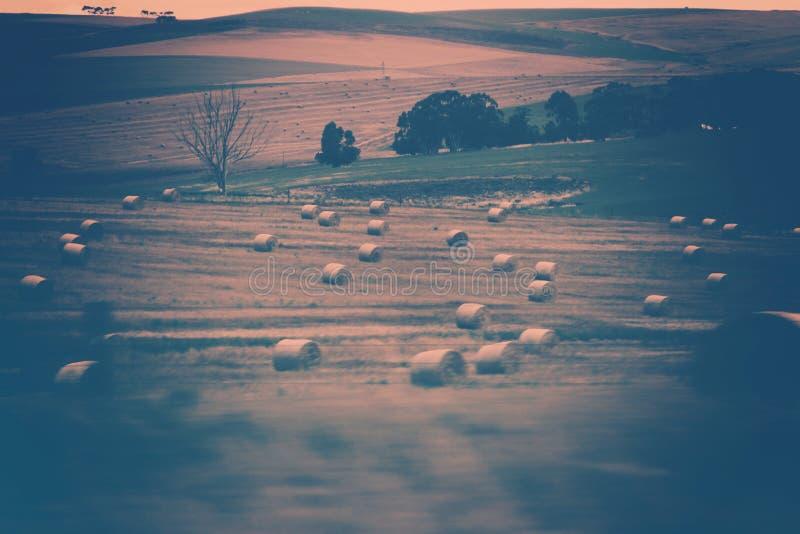 Exploração agrícola bonita com cauções de Hey fotografia de stock royalty free