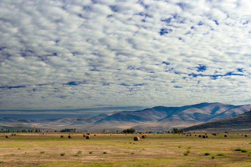 Exploração agrícola com nuvens de cumulus, Montana foto de stock