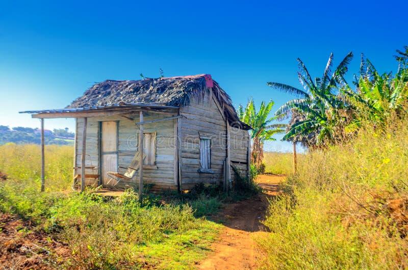 Exploração agrícola cubana abandonada rural do cigarro imagem de stock