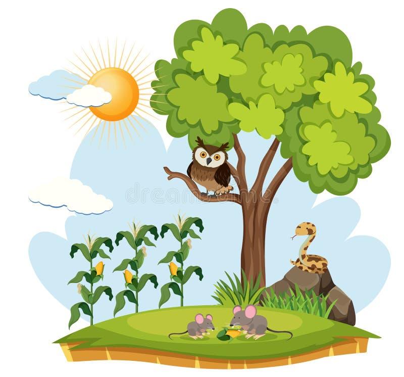 Exploração agrícola da colheita e animais selvagens ilustração stock
