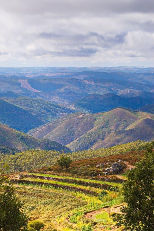 Exploração agrícola 3 da montanha imagem de stock royalty free