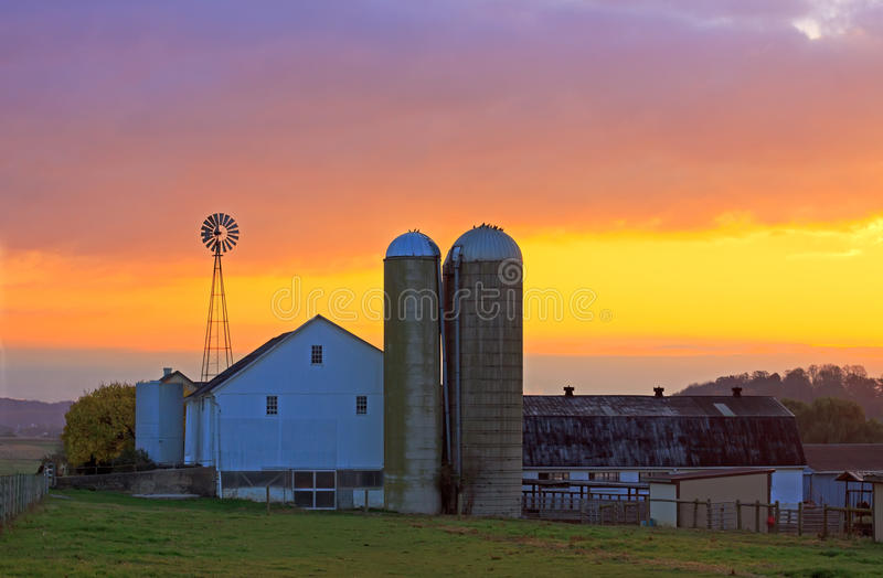 Exploração agrícola de Amish no nascer do sol imagem de stock