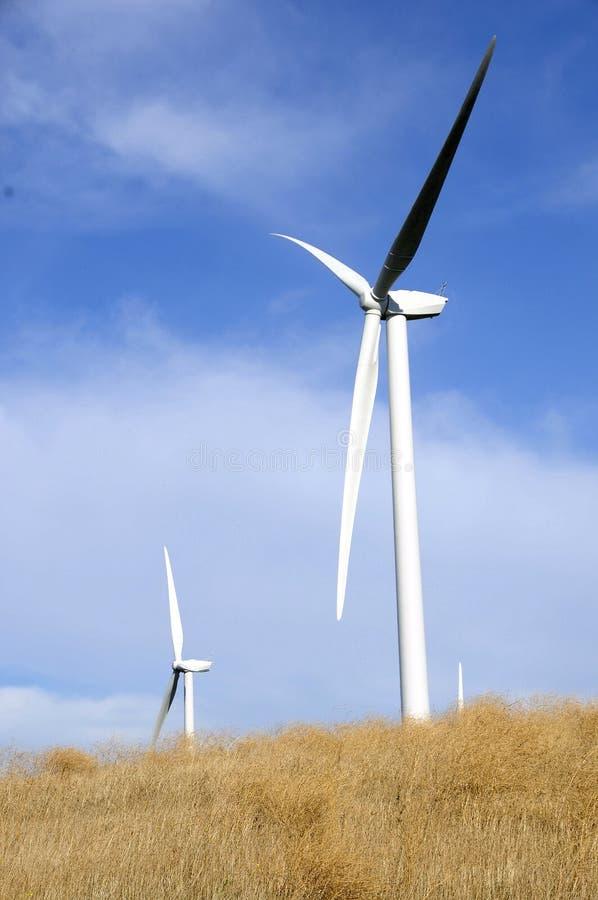 Exploração agrícola de energia do vento fotografia de stock