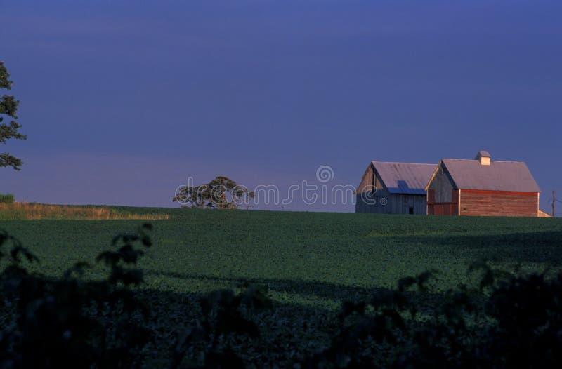 Exploração agrícola de Indiana imagem de stock royalty free