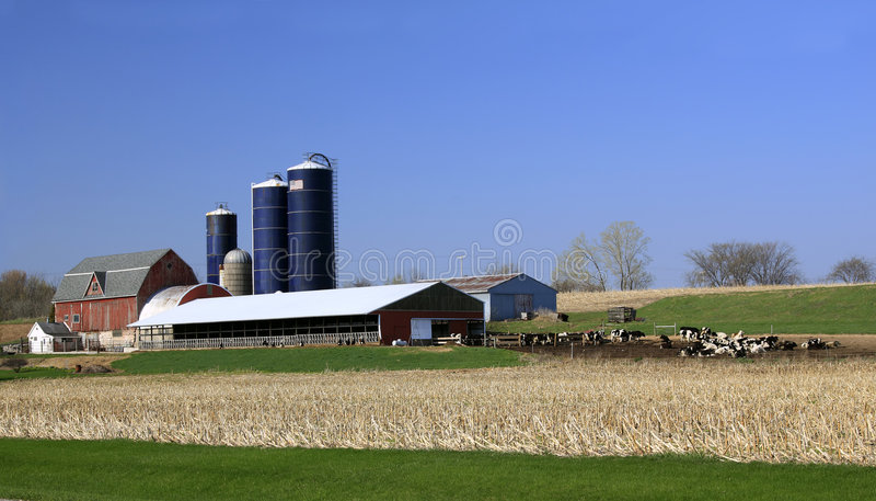 Exploração agrícola de leiteria de Midwest EUA imagens de stock royalty free