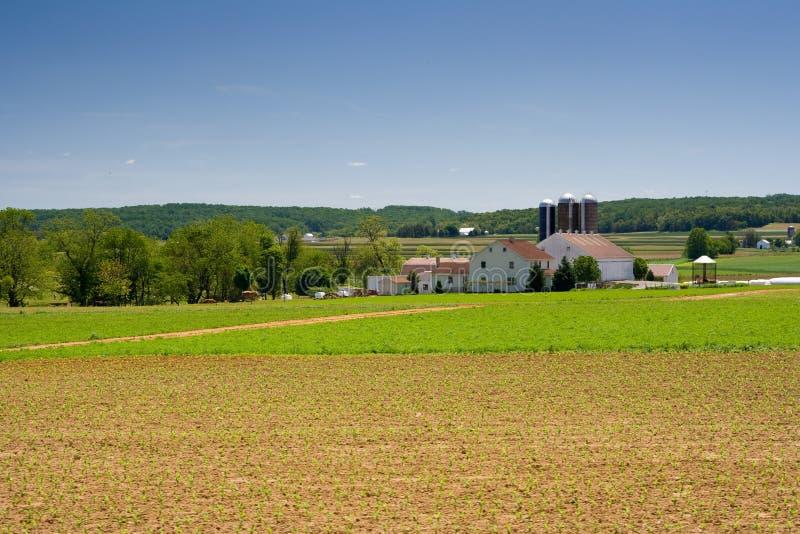 Exploração agrícola de leiteria em Pensilvânia rural foto de stock