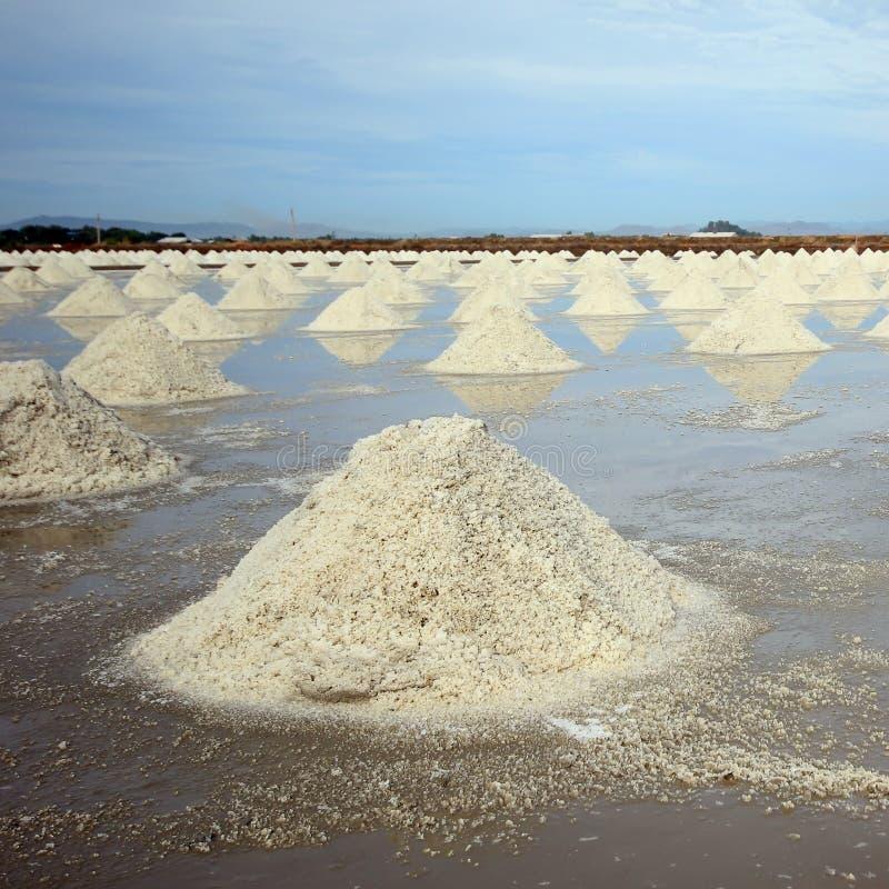 Exploração agrícola de sal imagens de stock