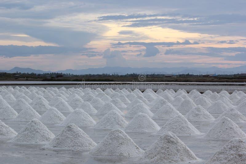 Exploração agrícola de sal fotografia de stock