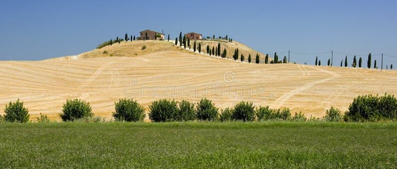 Exploração agrícola de Tuscan em Siena foto de stock