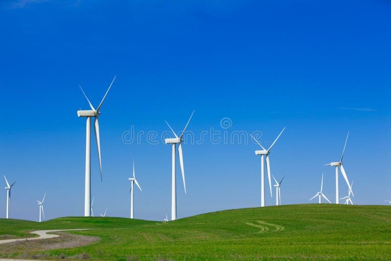 Exploração agrícola de vento com céu azul imagem de stock royalty free