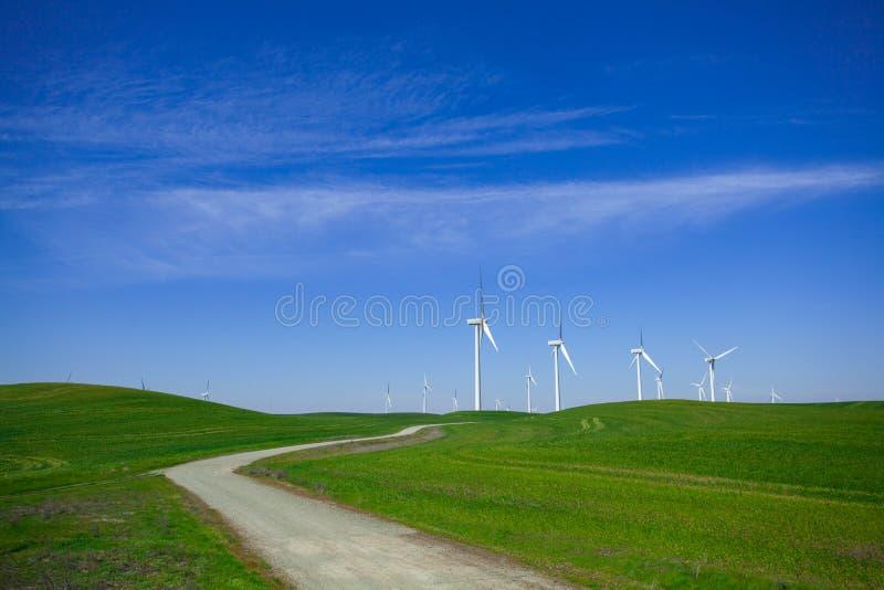 Exploração agrícola de vento com céu azul fotografia de stock