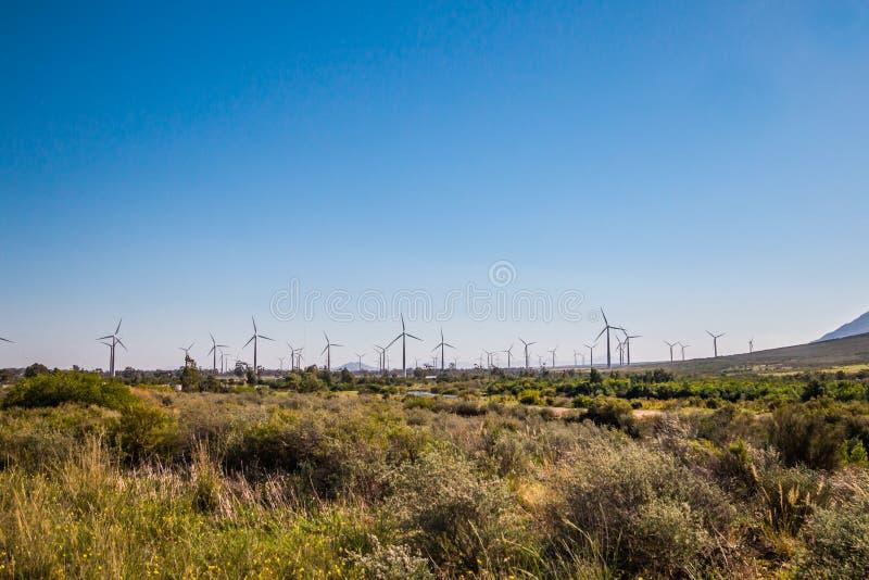 A exploração agrícola de vento com vento pôs o poder que gera turbinas fotografia de stock royalty free