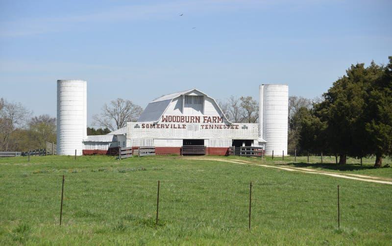 Exploração agrícola de Woodburn, Somerville, Tennessee imagens de stock royalty free