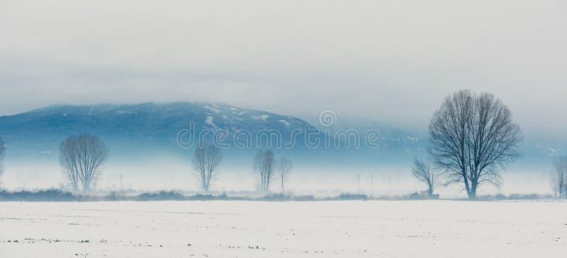 Exploração agrícola do inverno imagem de stock