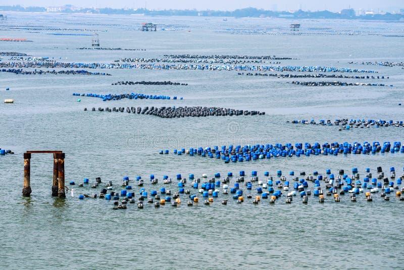 A exploração agrícola do marisco é feita do tanque plástico residual com un da corda fotos de stock royalty free