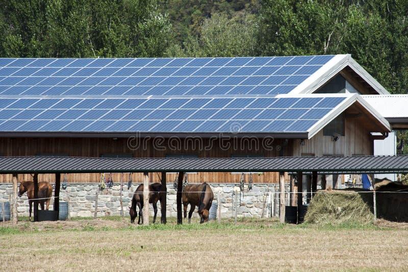 Exploração agrícola dos painéis solares imagem de stock royalty free