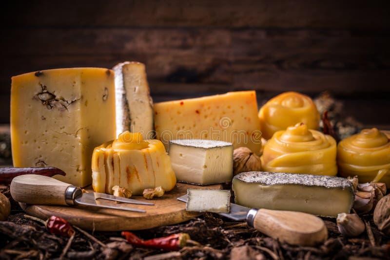 A exploração agrícola fez o queijo fotos de stock