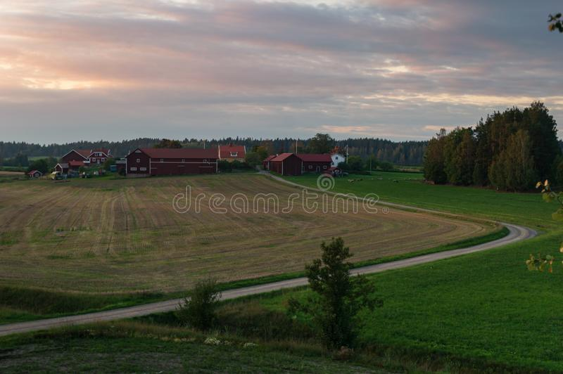 Exploração agrícola fora da Suécia de Gnesta imagens de stock