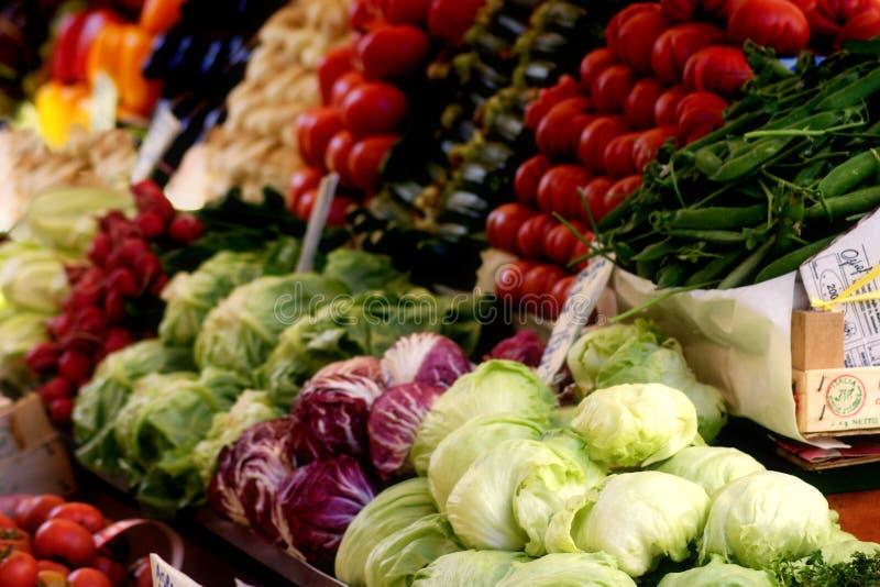 Exploração agrícola fresca fotografia de stock