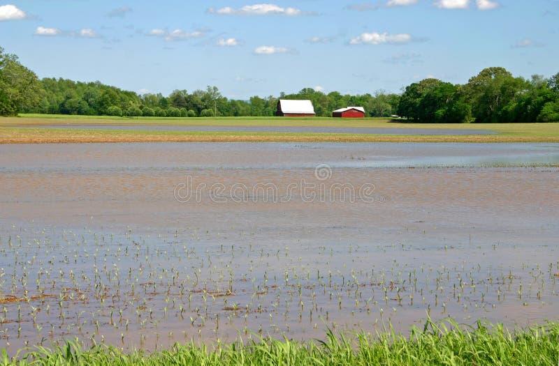 Exploração agrícola inundada imagens de stock