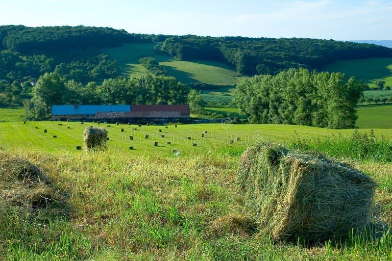 Exploração agrícola na república checa 1 imagens de stock