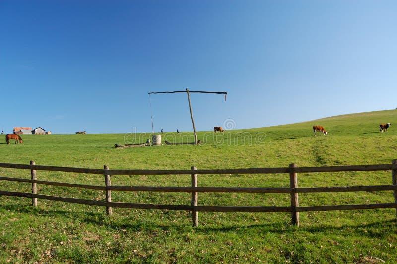 Exploração agrícola na Transilvânia fotografia de stock