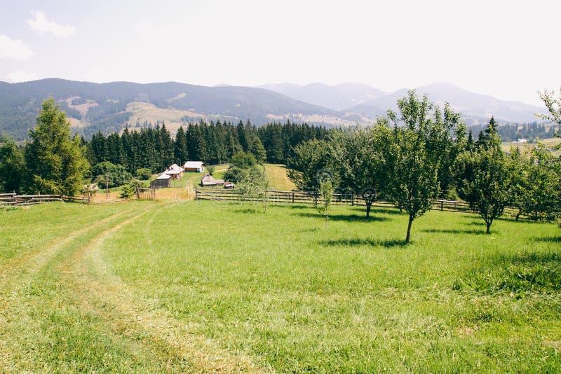 Exploração agrícola nas montanhas O trajeto que conduz à casa Muitos espaçam e a paisagem da montagem foto de stock royalty free