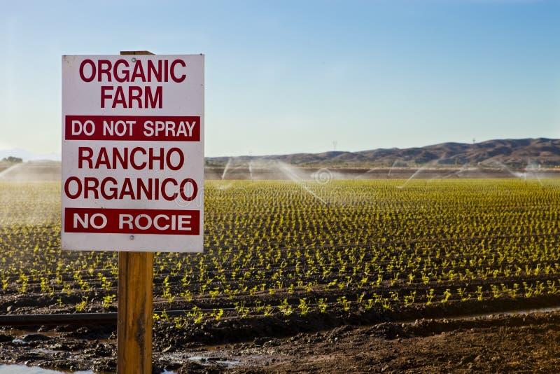 Exploração agrícola orgânica imagens de stock royalty free