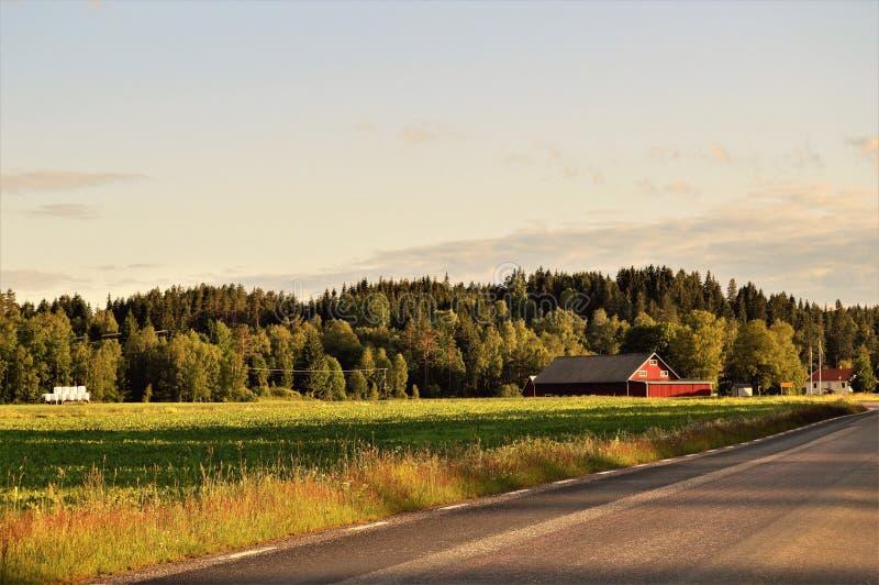 Exploração agrícola pela estrada