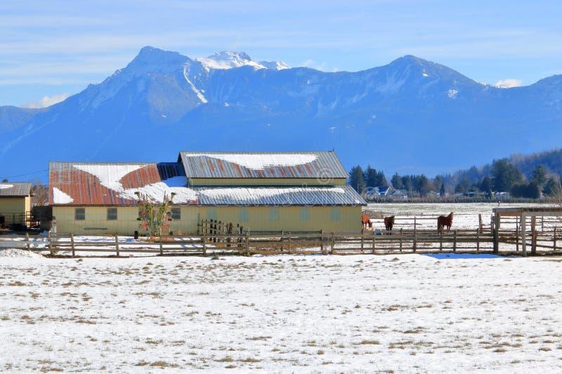 Exploração agrícola rústica do inverno no vale montanhoso imagens de stock