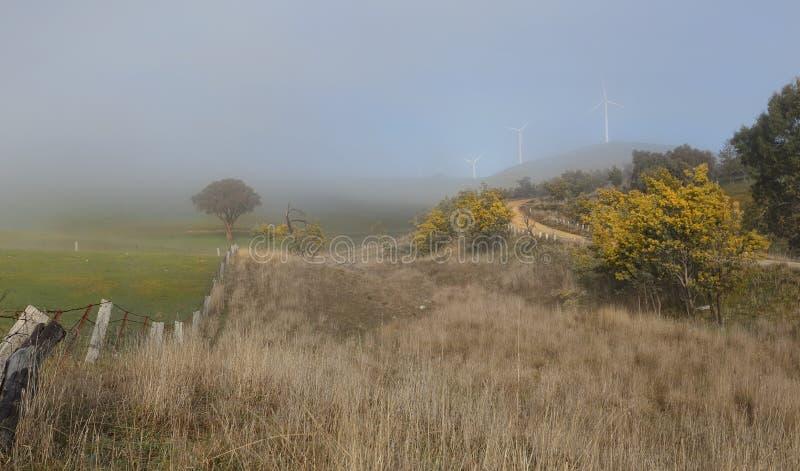 Exploração agrícola rural da paisagem do inverno nevoento e de vento de Carcoar Blayney imagens de stock