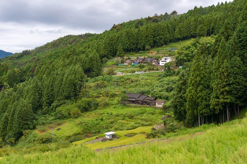 Exploração agrícola rural japonesa em inclinações de montanha Cena rural da agricultura imagens de stock royalty free