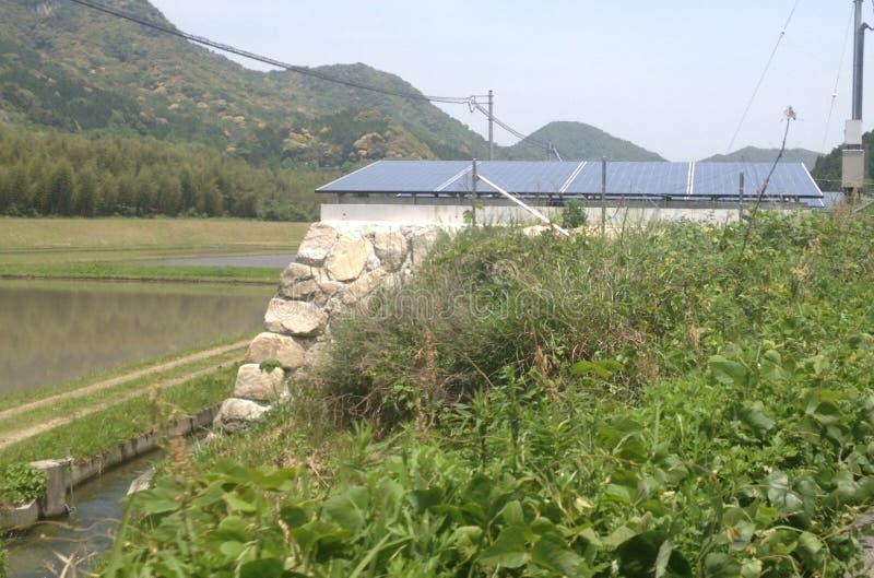 Exploração agrícola solar do campo japonês fotos de stock royalty free