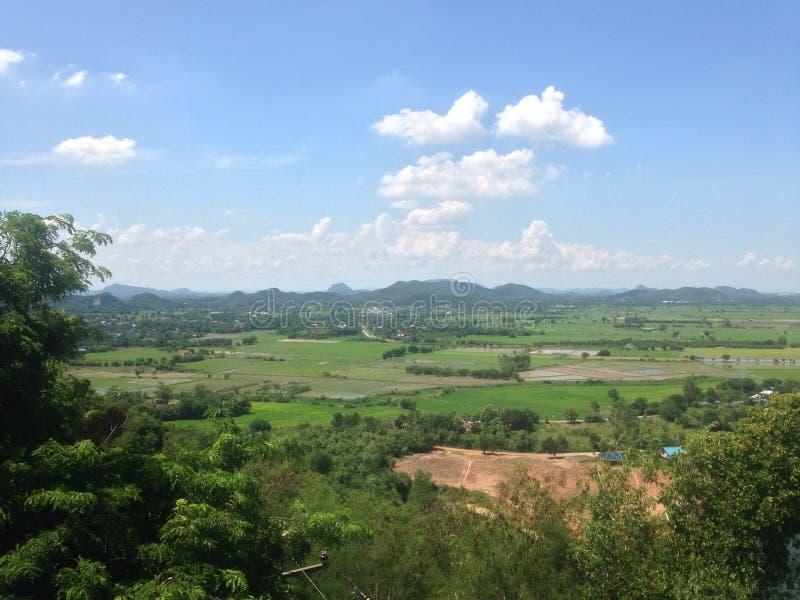 Exploração agrícola tailandesa imagem de stock royalty free