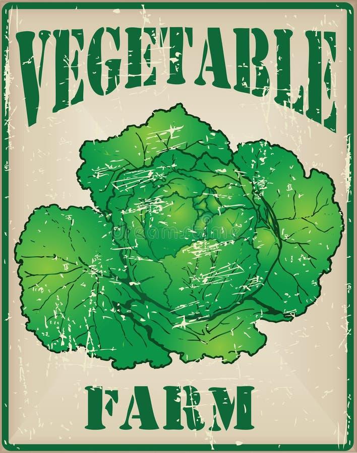 Exploração agrícola vegetal com couve ilustração royalty free