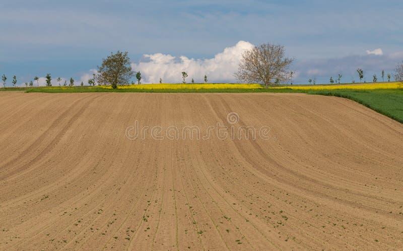 Explora??o agr?cola arable rural Campo C?u azul imagens de stock