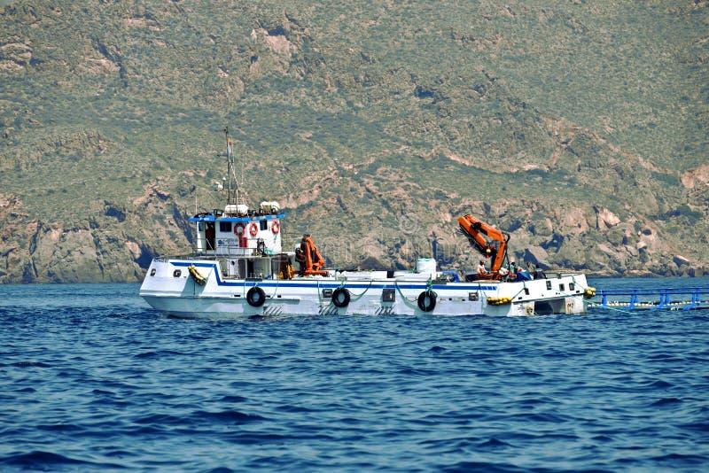 Explora??o agr?cola marinha Kartagena spain foto de stock