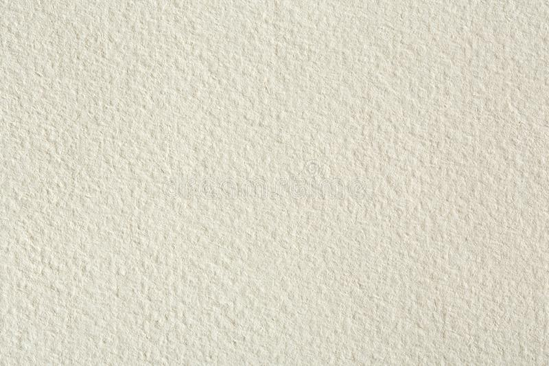 Exploración de alta resolución del papel de la fibra de la crema del azote de la papaya Foto de alta resolución fotografía de archivo